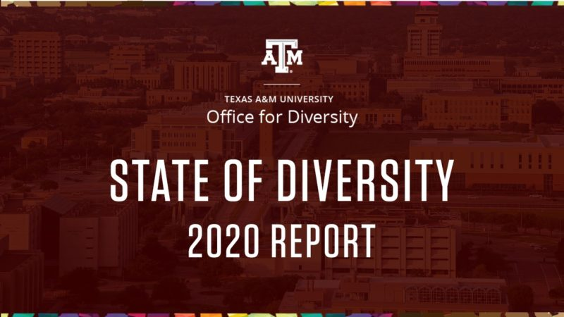 graphic reading state of diversity 2020 report