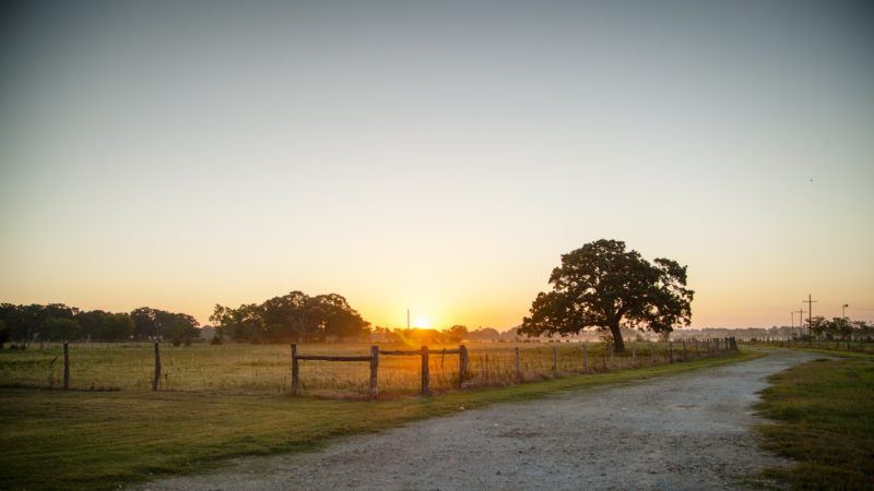 rural texas road at sunrise