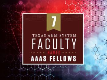 """graphic reading """"texas a&M system faculty named AAAS fellows"""""""