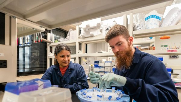 a woman works with a male student in a research lab